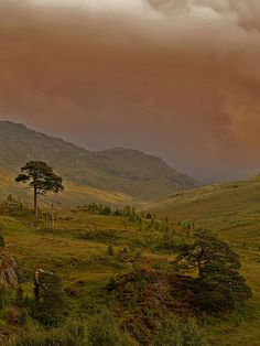 Scotland... By far one of the best places I've been to. I love it there!