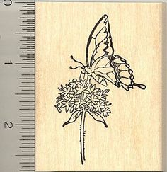 Butterfly on Milkweed Rubber Stamp - Wood Mounted RubberHedgehog,http://www.amazon.com/dp/B00130A3EY/ref=cm_sw_r_pi_dp_BFX2sb02AKYS62WX