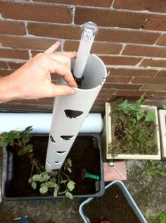 potted tower with irrigation tube to evenly distribute water to the plants