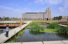 21-The-Water-Garden-Purifies-The-Rainwater « Landscape Architecture Works | Landezine