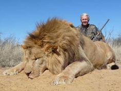Sign the petition to help end hunting safaris in Africa. Trophy hunting is cruel, unnecessary, and it's wiping out large populations of many of the animals we associate with Africa. Some of these animals will go extinct in our lifetimes, please sign!