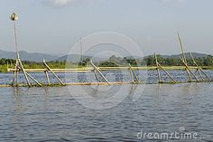 Wooden fence on Lake Inle in Myanmar (Burma). Asia