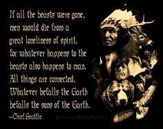 Discover and share Native American Warrior Quotes. Explore our collection of motivational and famous quotes by authors you know and love. Native American Prayers, Native American Spirituality, Native American Warrior, Native American Wisdom, Native American History, American Indians, American Indian Quotes, American Pride, Native Quotes
