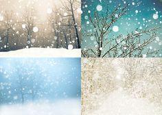 Neige photographie, photographie d'hiver, la forêt canadienne, blanc d'hiver, la neige des bois pastel flocon d'arbres - 4 5 x 7 tirages