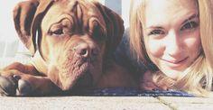 #newtonthefrenchmastiff // Bordeaux-Dogge Newton