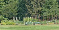 SO GÄRTNERT DIE FIRST LADY:Michelle Obama erklärt Kindern in ihrem eigenen Kräutergarten neben dem Weißen Haus, was gesunde Ernährung bedeutet.