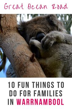 Great Ocean Road, Australia. Family-friendly things to do with children. Warrnambool as a destination for families with kids. #victoria #familytravel