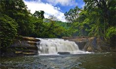 This waterfall is located near Thodupuzha in Kerala and is named after Mr Thommachen Kuruvinkunnel, a great hunter of the region in the early 1900s. He was the one who found the Thommankuth Waterfalls which comprise of seven steps before the water gushes into a pool below. The area is covered with lush greenery and exotic flora and fauna.http://www.androidinfosys.com/