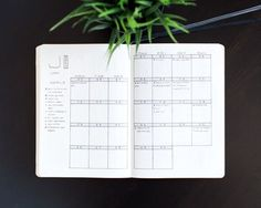 Mark's Monthly Log in his Bullet Journal