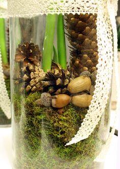 http://holmsundsblommor.blogspot.se/2011/12/skogsinspirerat.html Amaryllis i glaskruka med kottar, mossa och ekollon