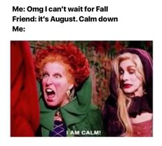 26 Memes For Anyone Who's Over August and Ready For Fall. Yes, it's August and you're sweating like crazy, but you don't let that stop you from obsessing about Fall. This meme list is for anyone who's craving a pumpkin spice latte right now. Halloween Meme, Halloween Quotes, Halloween Costumes, Halloween Halloween, Spirit Halloween, Halloween Cards, Fall Humor, Fall Memes, Stupid Funny Memes