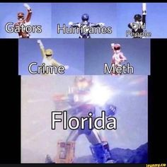 The sad thing is that all the Florida memes are accurate.(born and raised Floridian) Really Funny Memes, Stupid Funny Memes, Wtf Funny, Funny Relatable Memes, Funny Stuff, Funniest Memes, Random Stuff, Funny Sms, Funny Drunk