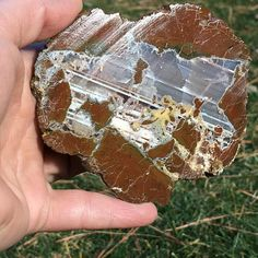 Hey, I found this really awesome Etsy listing at https://www.etsy.com/listing/583295497/richardson-ranch-agate-slab-geode-slice