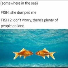FunSubstance - Funny pics, memes and trending stories Really Funny Memes, Stupid Funny Memes, Funny Relatable Memes, Funny Posts, Funny Stuff, Funny Things, Random Stuff, Animal Memes, Funny Animals