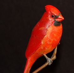 Cardinalhand carved wooden songbird miniature by leebrowncarvings, $530.00