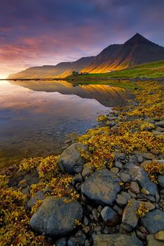 Evening in the Fjords by Dylan & Marianne Toh #photography