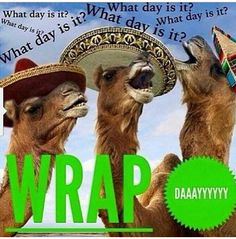 What day is it!? Wrap day!! It works Text or call me, Chelsey! 269-245-9274 https://www.facebook.com/chelsey.page.3 www.cpage907.myitworks.com