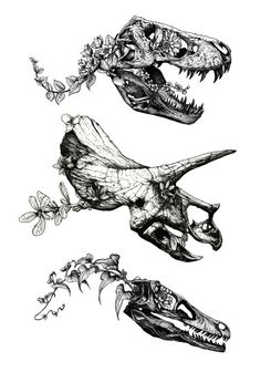 dinosaur tattoos Jurassic Bloom on Behance Piercings, Piercing Tattoo, Jurassic Park Tattoo, Petit Tattoo, Dinosaur Drawing, Dinosaur Sketch, Dinosaur Design, Tattoo Style, Schulter Tattoo