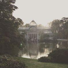 Comença a ser una de les meves fotos recurrents, però no me'npuc estar... #palaciodecristal #retiro #parquedelretiro #madrid #run #running #5k #5krun #ohquebé