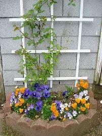 Treliça 1, Outdoor Structures, House, Nuthatches, Fields, Gardening, Ideas, Gardens, Plants