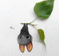 More cute bat drawings :)