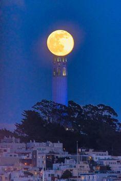 Coit Tower, San Francisco.