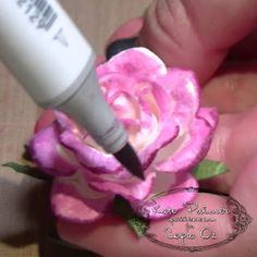 Copic Oz: Using Copic Markers to Create Stunning Coloured Flowers