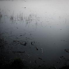 Lieux et non lieux © D.Dauphy