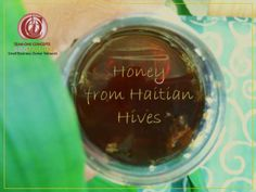 http://toctown.com Thinking and Training Thursday: Honey from Haitian Hives. The Unique Art of Beekeeping  #fatherHOOD #SBOCulture
