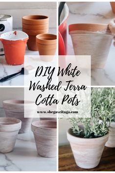 Porches, Easy Plants To Grow, White Pot, Cement Crafts, Painted Cups, Terracotta Pots, Clay Pots, Potted Plants, Flower Pots