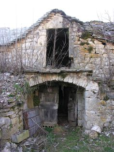 Abandoned Root celler