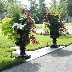 Capital Garden Fluted Urns come in three sizes of molded fiberglass made to resemble antique lead urns. Each urn is meticulously sculpted and will Tropical Landscaping, Landscaping With Rocks, Front Yard Landscaping, Landscaping Ideas, Backyard Ideas, Mulch Landscaping, Canna Lily Landscaping, Dwarf Trees For Landscaping, Front Yard Walkway