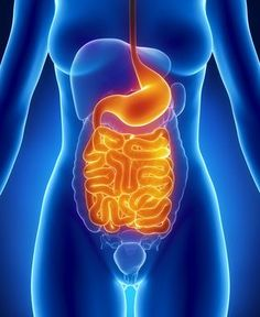 Small intestinal bacterial overgrowth (SIBO) is a pesky issue which means that there's abnormal numbers of normal bacteria in the gastrointestinal tract. SIBO may cause intestinal symptoms ranging …