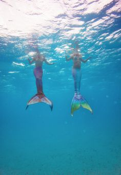 mermaids swimming