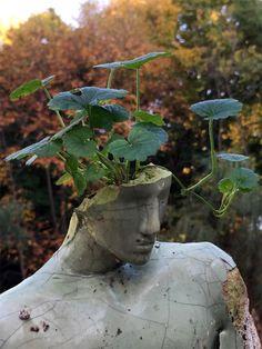 Les Sculptures de Emil Alzamora défient la Physique (3)