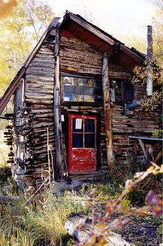 Log Cabin Exterior, Research Lab, Stone Flooring, Brain, House Styles, Ph, Journals, Solar, Walls