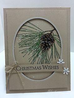 clubd1014 Ornamental Pine by Debbie Currier