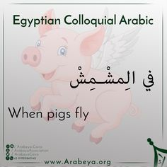 A new Egyptian Expression 💪 Apricot = مشمش Tell us more expressions, and we will tell you its equivalence in Arabic 👌😃 Learn English Grammar, Learn English Words, English Language Learning, English Lessons, English Vocabulary, Book Qoutes, Quotes, Learn Arabic Online, Arabic Phrases