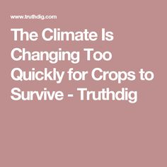 The Climate Is Changing Too Quickly for Crops to Survive - Truthdig