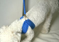 Friendly harness with matching leash Dog cotton harness by BubaDog