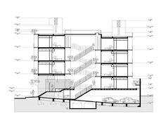 Oriente 7 16,Section
