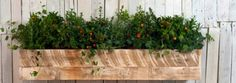 Pallet wood window planter box