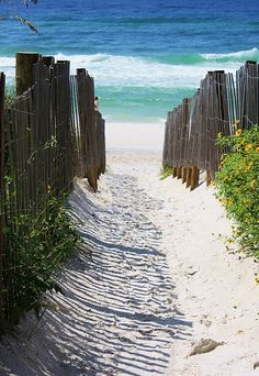 seaside, florida - beach path. seaside and seagrove are perfect vacation spots.  so many vacation rentals to choose from!