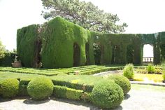 Giardini di Villa Gamberaia (Florence) - 2020 All You Need to Know BEFORE You Go (with Photos) - Tripadvisor Santa Maria Novella, Famous Gardens, Classic Garden, Florence Italy, Stunning View, Wisteria, Wine Tasting, Nice View, Day Trips