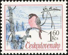 Eurasian Bullfinch stamps - mainly images - gallery format