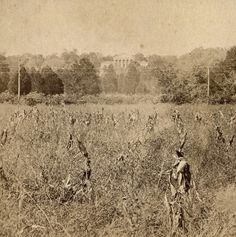 THIS IS NOW ARLINGTON CEMETERY ` Arlington House .....c.1867, this was taken shortly after the civil.war from the fields looking up at the mansion