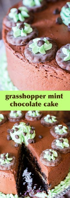 An easy to decorate, from-scratch mint chocolate cake with grasshopper cookies, chocolate buttercream and peppermint buttercream frosting.