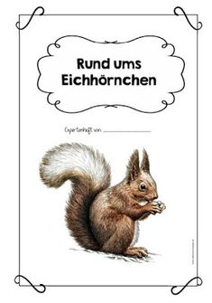 """Expert booklet on the """"All about squirrel"""" card index The last week I … - Kinderspiele Primary Education, Science Education, Primary School, Credit Card Application, Speech Language Pathology, Index Cards, Home Learning, Middle School Science, Booklet"""