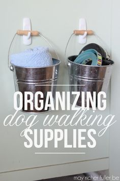 Organizing Dog Walki