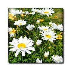 "Daisies of Summer III - 4 Inch Ceramic Tile by Patricia Sanders. $11.99. Construction grade. Floor installation not recommended.. High gloss finish. Clean with mild detergent. Image applied to the top surface. Dimensions: 4"" H x 4"" W x 1/4"" D. Daisies of Summer III Tile is great for a backsplash, countertop or as an accent. This commercial quality construction grade tile has a high gloss finish. The image is applied to the top surface and can be cleaned with a mild de..."